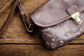 how to remove mold from your leather bag