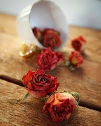 عباد الله أهل الإحسان هم أحباب ورود رومانسية للاهداء