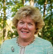 Ann Johnson Stewart - Minnesota Senate District 44 Candidate