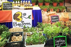 Go Green With The Earth Collective—An Organic Lifestyle Bazaar | LBB