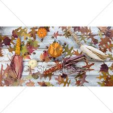 Seasonal Autumn Foliage And Decorations On Rustic White W Gl Stock Images