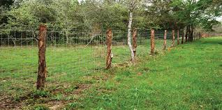 Hog Fence The 50 Year Fence High Tensile Fixed Knot Hog Fence