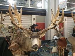 Breaking 230 Mule Deer Poached In Wyoming Gohunt