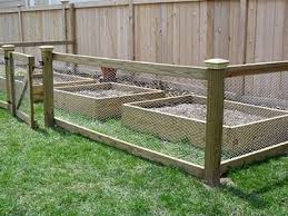 Chicken Wire Mesh Used In Garden As Fence Raised Bed Trellis