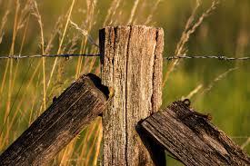 Fencing Post Motosha