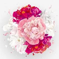 صور ورد جميل Hd 2019 ورود وازهار رومانسية W V V Lhksdm