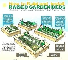 raised garden amazingfashion