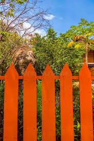 63 Orange Wooden Fence Panels Photos Free Royalty Free Stock Photos From Dreamstime