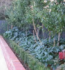 melbourne landscaping garden designs