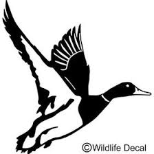 10 Duck Decals Ideas Hunting Duck Duck Hunting