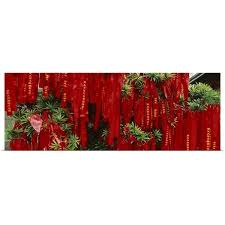 Shop Prayer Ribbons Tied To A Tree Jade Buddha Temple Shanghai China Multi Overstock 16884561