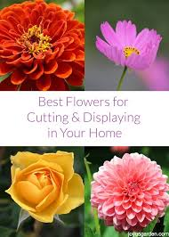 best flowers for cutting displaying