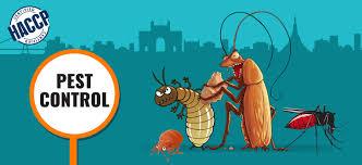 Pest Control Kolkata: Best Pest Control Company Near Me | Hicare