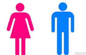 Cresce no trabalho a diferença entre homens e mulheres - Economia - Brasil  News