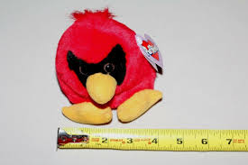 casey the red cardinal bird with