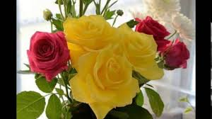 احلى الورود الرومانسية جمال الورود الرومانسيه وداع وفراق