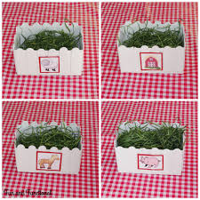 Farm Birthday Party Popsicle Stick Picket Fence Decorations Fun And Functional Blog