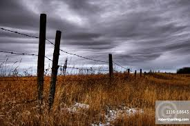Barbed Wire Fence Posts With Stock Photo