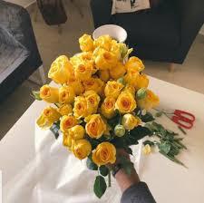 Yellow أصفر On Twitter حط وثاني شخص يطلع لك يهديك ورد اصفر