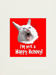 I M Not A Happy Bunny Photographic Print By Whatamidoing20 Redbubble