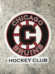Bruins Car Sticker Or Magnet Chicago Bruins Apparel By Imagecast Marketing
