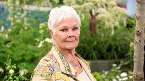 Dame Judi Dench Is Now Doing TikTok Dances