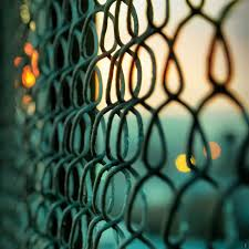 Chain Link Fence Ipad Wallpapers Free Download
