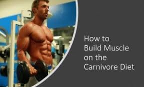 build muscle on the carnivore t