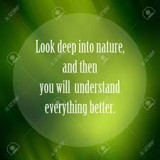 qoute about nature inspiration quote on green leaf background