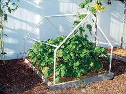 8 cold frame plans for year round