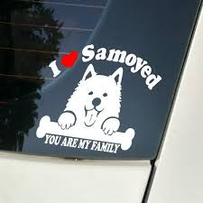 Samoyed Dog Sticker For Car Stickers And Vinyl Decals Laptop Sticker Decal Motorcycle Skateboard Funny Vinyl Stickers Wish