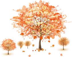 fall wallpaper mac cute png