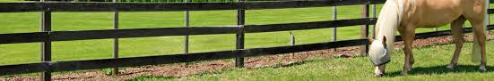 Cost Of Horse Fencing Comparison Guide Fence Guides