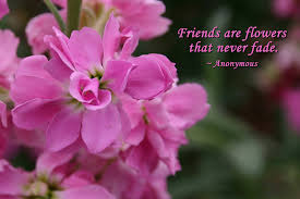 friends are flowers flower quotes