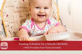 9 month old feeding schedule with free