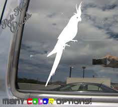 Cockatiel Bird Car Truck Bumper Laptop Window Vinyl Decal Sticker Wish
