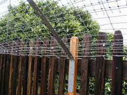 How To Build Your Own Cat Fence Hunker Cat Fence Cat Proofing Cat Garden