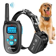 Replay Video Capture Crack Best Wireless Dog Fence Reviews