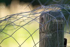 Semiabstract Of Metal Wire Fencing Sitting On Top Of Fence Post Postioned To Left Stock Photo Download Image Now Istock