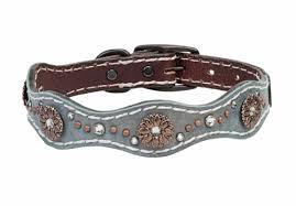 weaver leather savannah 1 dog collar
