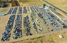 100 car auctions copart