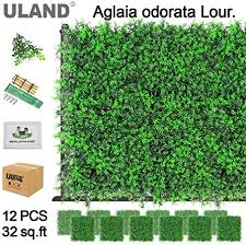 Uland Artificial Hedges Boxwood Panels Greenery Ivy Privacy Fence Screening Home Garden Outdoor Wall Decoration Pack Of 12pcs 20 X20 A042g Amazon Co Uk Kitchen Home