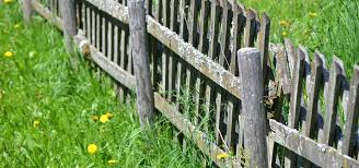 Mending Fences With Your Neighbours Who Pays Whn Solicitors