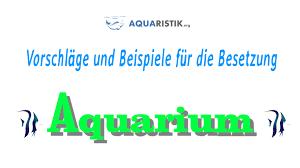 49+ Aquarium Einrichten Planer Images