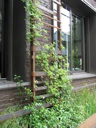 Innovative Trellises In Landscape Other Metro With Wood And Metal Fence Ideas Next To Picket Fence Alongside Climbing Vines And Grape Arbor Plans