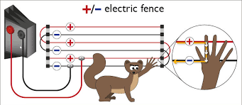 Positive Negative Electric Fence