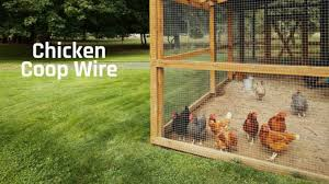 Best Wire For Chicken Coop Fencing Top Reviews Of 2020