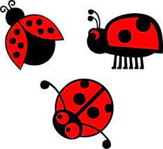 Animals Nature Wall Decals Stickers Ladybug Set Decal Vinyl