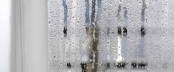 de la condensation dans ses fenêtres c