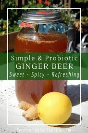 homemade ginger beer easy and